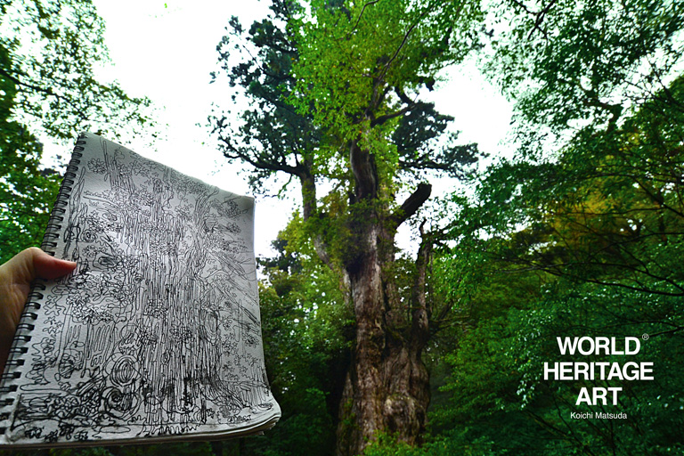 屋久島 世界遺産旅 2012